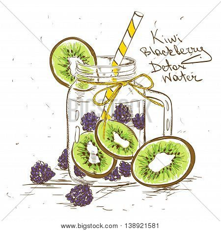 Hand drawn sketch illustration with Kiwi Blackberry detox water. Healthy lifestyle concept.