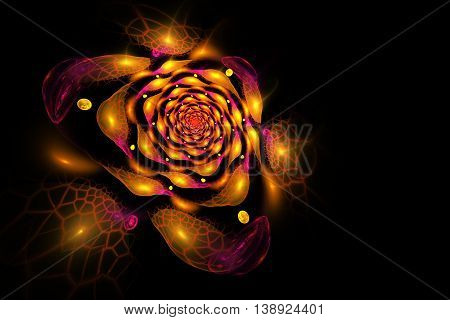 Abstract colorful rose flower on black background. Fantasy orange yellow and red fractal design for postcards or t-shirts. 3D rendering.