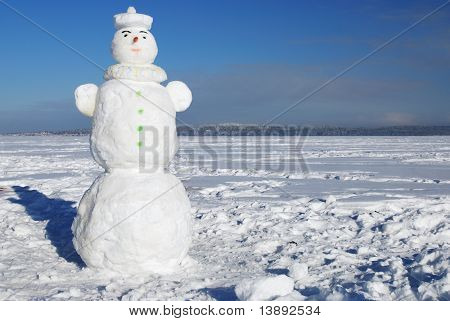 Snowman On A Wintry Sunny Day