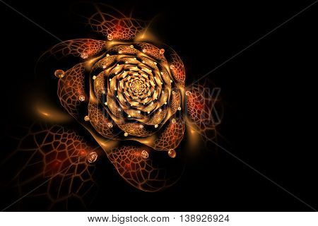 Abstract colorful rose flower on black background. Fantasy orange yellow and brown fractal design for postcards or t-shirts. 3D rendering.