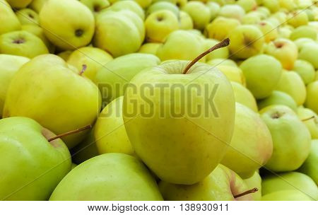 background of fresh green apples. close-up of an apple