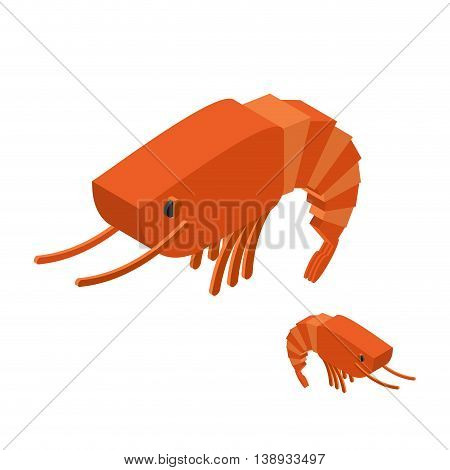 Shrimp Isometric On White Background. Marine Arthropod Animal. Oceanic Plankton. Underwater Crustace