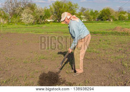 Elderly Ukrainian peasant digging up with pitchfork in garden