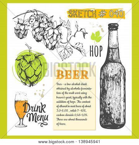 Sketch illustration with branch of hops and bottle of beer. Vector illustration.