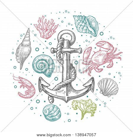 Set sea shell, coral, crab, shrimp and anchor. Vector engraving vintage illustrations. Isolated on white background. For tattoo, web and label