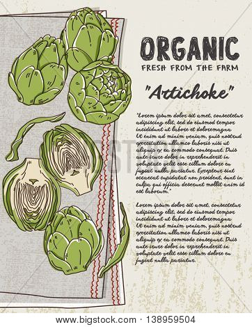 Fresh Artichoke on cotton napkin background. Fresh organic food