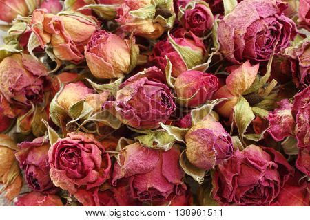 Food background - dried pink rose hips