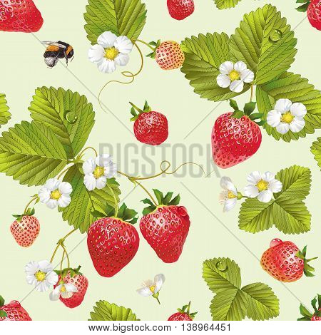 Vector strawberry seamless pattern. Background design for tea, juice ,natural cosmetics, candy with strawberry filling, farmers market ,health care products. Best for textile,wrapping paper.