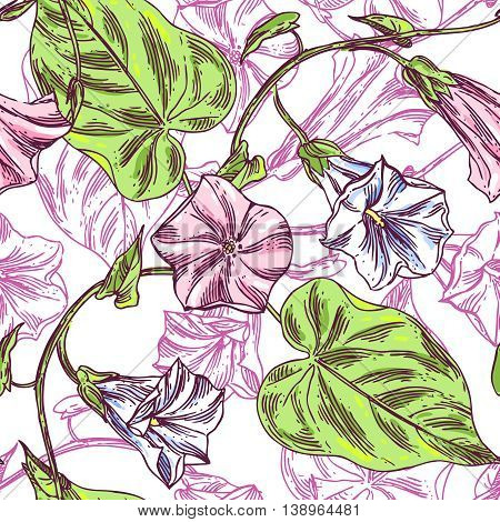 Beautiful hand drawn vector close up  illustration sketching of wildflowers.