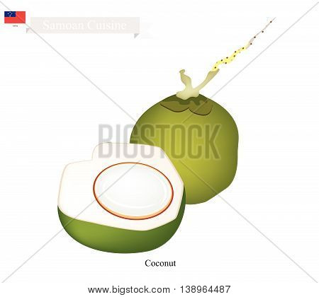 Samoa Fruit Fresh Coconut. One of The Most Popular Fruits in Samoa.