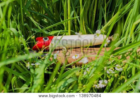 Pike fishing lure close up in grass - concept of a rural getaway and fishing