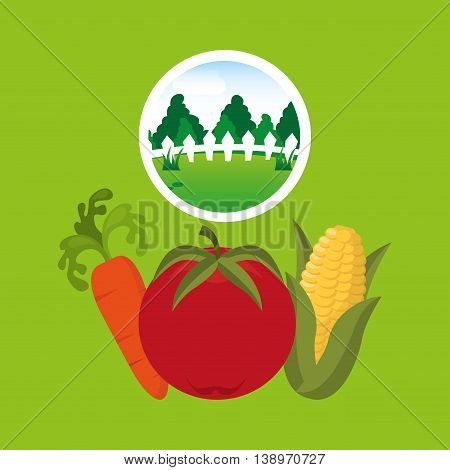 farm countryside vegetable isolated, vector illustration eps10