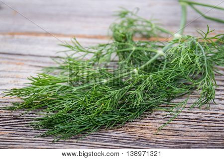 bunch of dill herb on wooden table