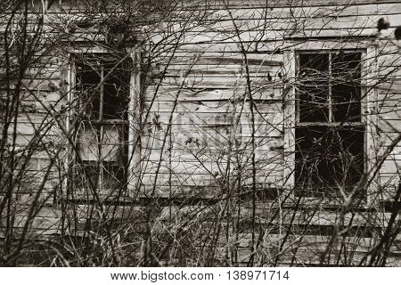 Windows of abandoned house in Appalachia with overgrown vines, Chilhowie, Virginia
