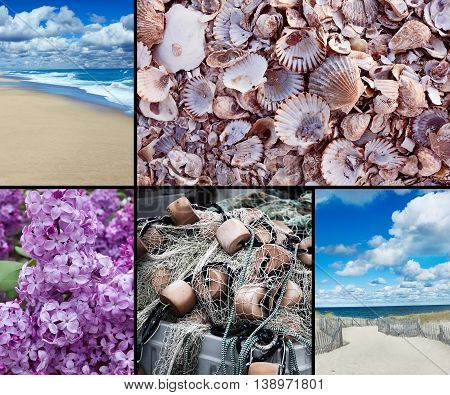 Photo collage of Cape Cod images which include beaches, lilacs, shells, fishing net.