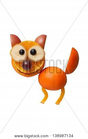 Funny cat made of fruits on white background