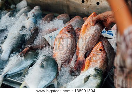 Woman Buys Seafood At The Local Market