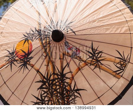 Oil Paper Chinese umbrella background with colorful flower décor.