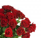 image of red rose  - Big Red Roses Bouquet border - JPG