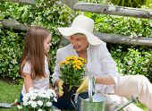 stock photo of grandmother  - Grandmother with her granddaughter working in the garden - JPG