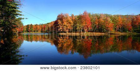 Allegheny state park