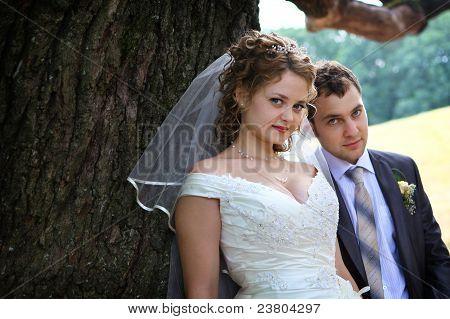 Novia y el novio cerca de roble