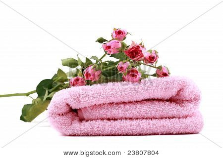 some small pink roses on a pink towel