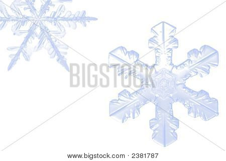 Snowflake Closeup In White Background