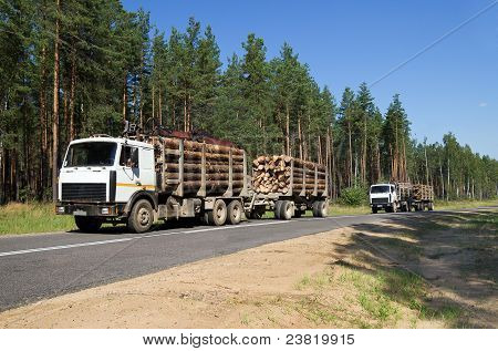 Transportation timber