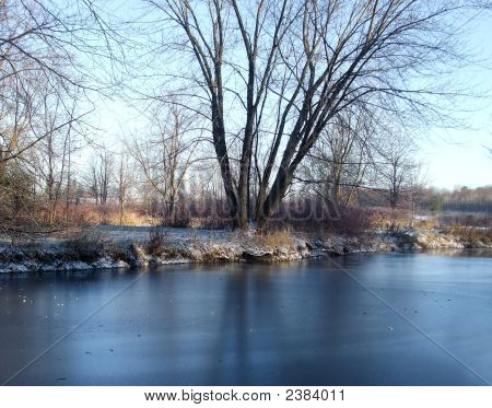 Frozen Winter Pond