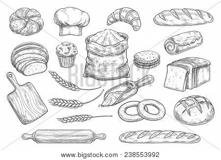 Bread Isolated Sketch Set Of