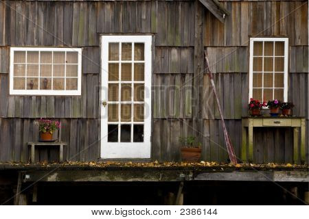 Old Cabin With Flowers