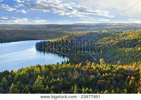 Bosque de caída y Vista Lago superior