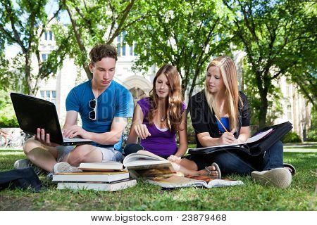 Group of college students studying together on campus ground