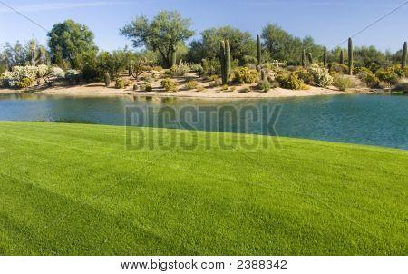 Golfbaan In de woestijn
