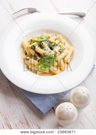 Sedani Rigati with cheese cream sauce and spinach