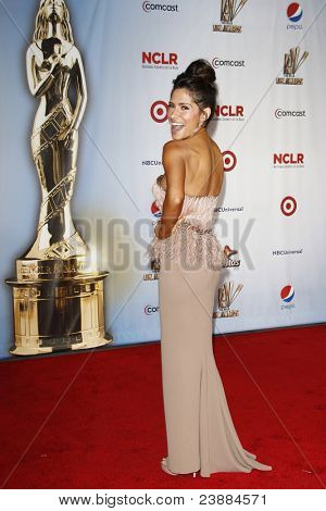 SANTA MONICA, CA - SEP 10: Sarah Shahi at the 2011 NCLR ALMA Awards held at Santa Monica Civic Auditorium on September 10, 2011 in Santa Monica, California