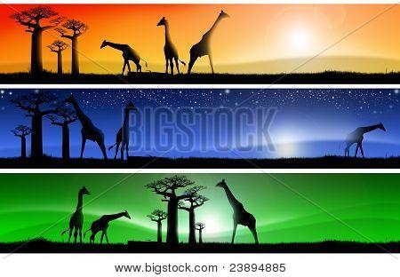 Drei fantastische afrikanische Landschaften