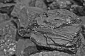Heap Of Coal. One Rock Of Coal Close Up On Black Coal Background. Place For Text. Copy Space.high Qu poster