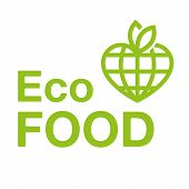 Vegan Eco Food Logo Emblem Icon Vector Design. Green Logo Isolated White Background. Healthy Fresh L poster