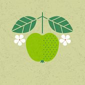 Apple Illustration. Apple With Leaves And Flowers On Shabby Background. Flat Design. Original Simple poster