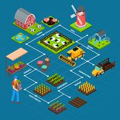 Isometric Flowchart With Farmer Mill Barn Harvest Machinery And Domestic Animals On Blue Background  poster