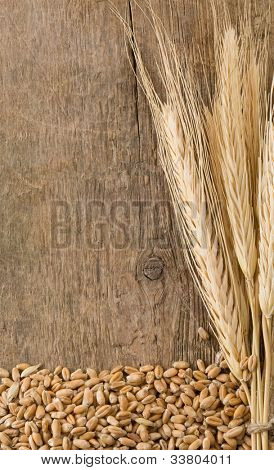wheat spikes on wooden board with copy space