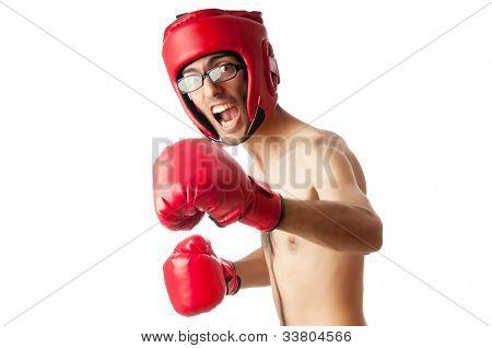 Boxeador gracioso aislado en blanco