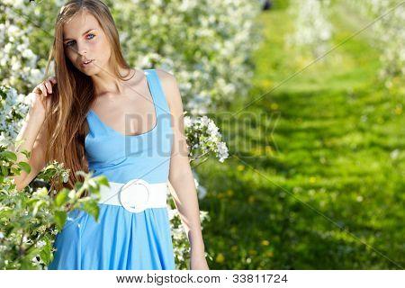 mulher bonita vestindo o vestido azul sobre o pomar de Primavera