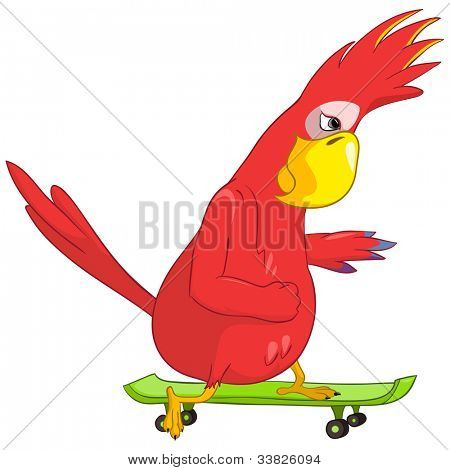 Cartoon Character Funny Parrot Isolated on White Background. Skateboarding. Vector EPS 10.