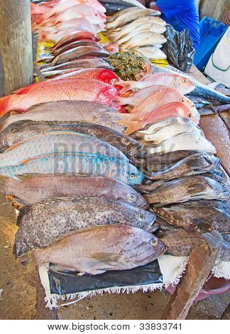 Fresh fish on the Maputo fish market