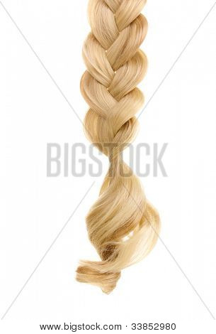 Blond hair braided in pigtail isolated on white