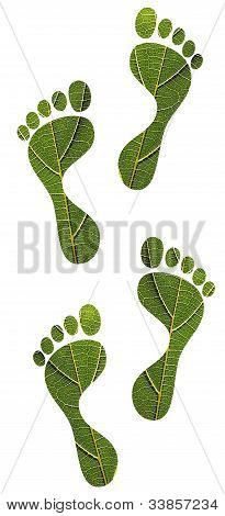 Save Nature Concept - Green Leaf Human Footprints