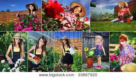 Frau garten-ringelblume Serie